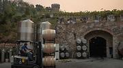 vinos-produccion-reuters.png
