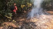 incendio-forestal-maule-efe.png