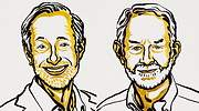 Paul R. Milgrom y Robert B. Wilson ganan el Premio Nobel de Economía 2020