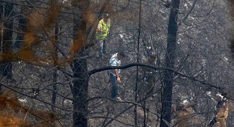 incendio-forestal-efe.png