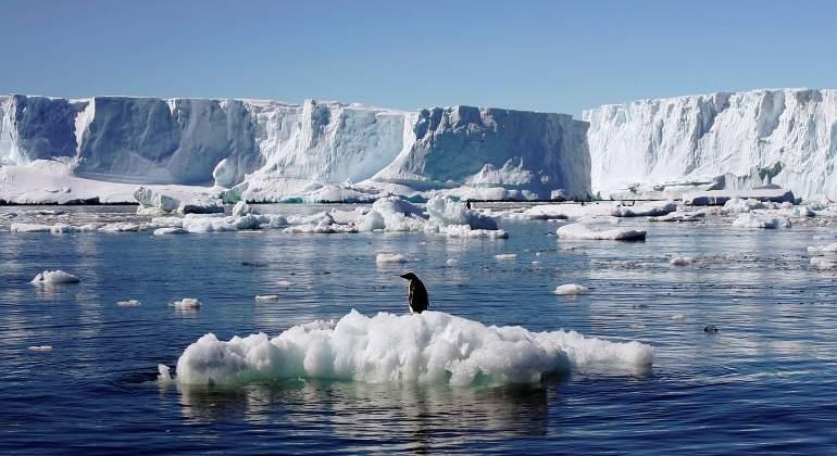 Masiva muerte de pingüinos en la Antártida