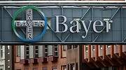 Bayer-Reuters.JPG
