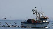 botes.harinapescado-peru-reuters.png