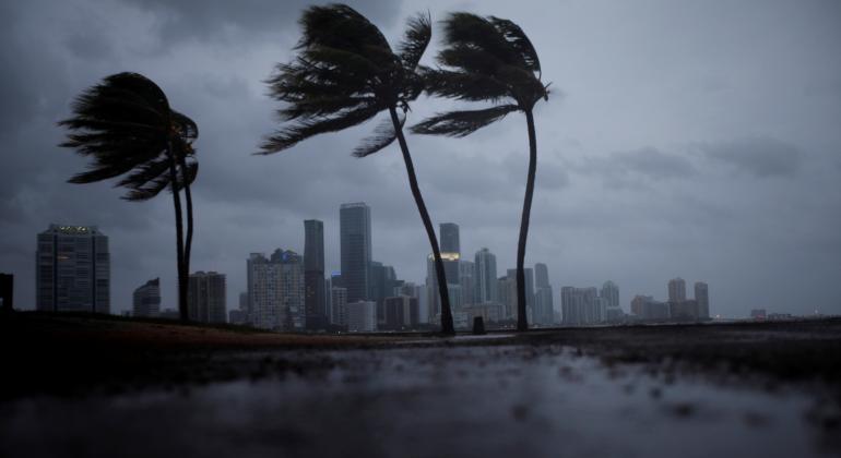 huracan-irma-miami-palmeras-viento-reuters-770x420.png
