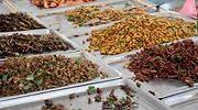 insectos-comida-bandejas-770-dreamstime.jpg