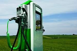 El fraude de los biocombustibles