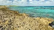 arrecifes-cuba-medio-ambiente.jpg