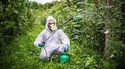cientifico-biologo-quimico-fumigando-plantas-fitosanitarios-istock-770x420.jpg