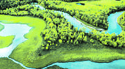 Suez, dedicado a la preservación del patrimonio natural