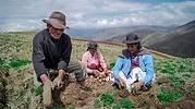 agricultura_agro.jpg