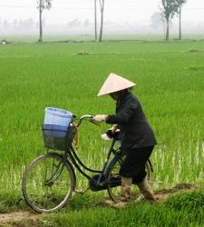 chino_bicicleta.jpg