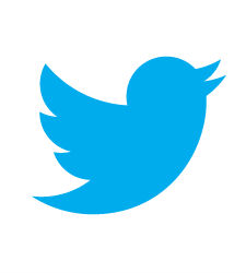 twitter-nuevo2.jpg