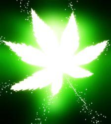 marihuana-electrica.jpg