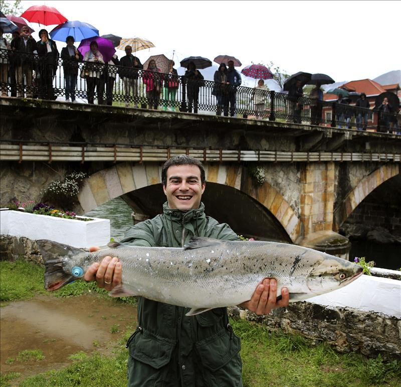 Pagan euros por el campanu del r o narcea asturias - Marisquerias en asturias ...