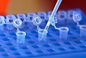 Diseñan una nueva terapia para tratar la enfermedad autoinmune sin dañar la inmunidad normal